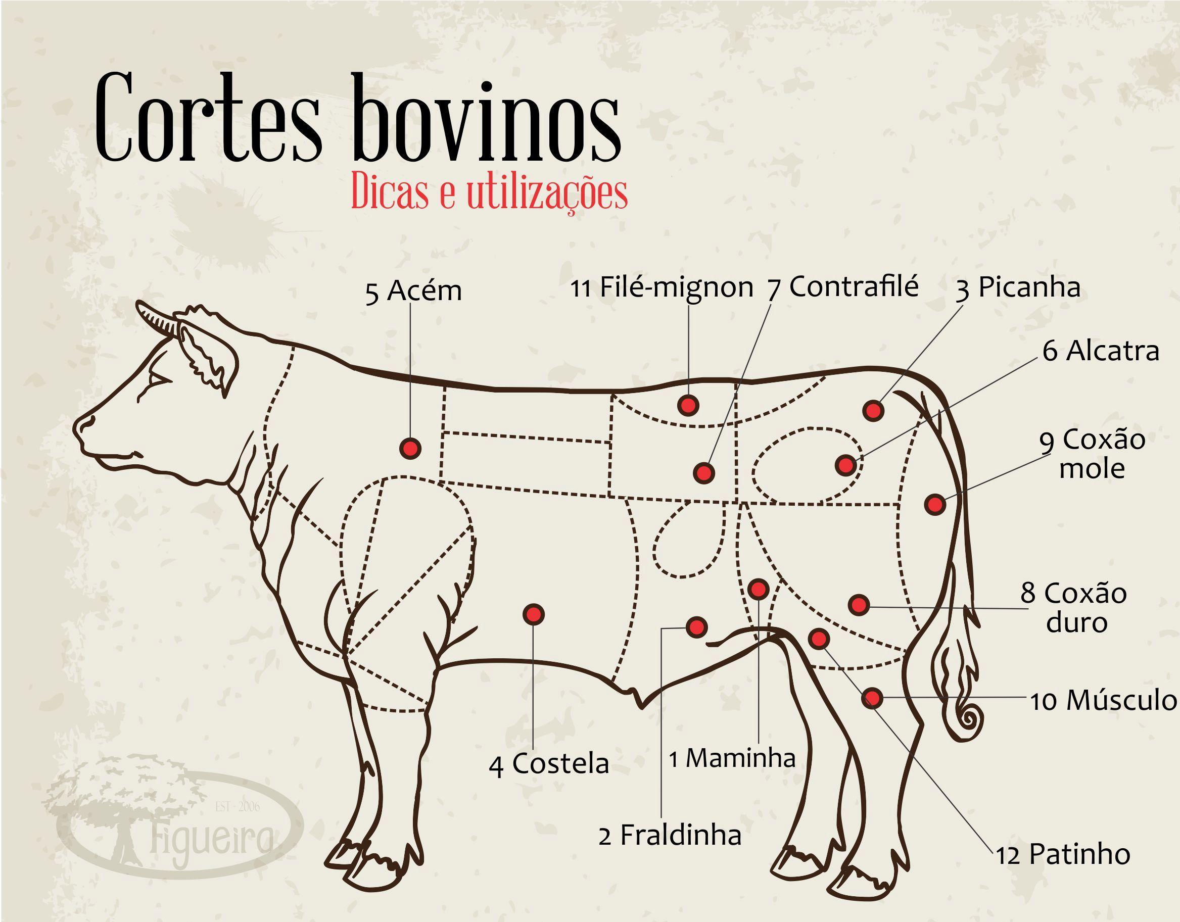Resultado de imagem para cortes bovinos