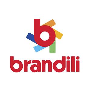 Ações sociais da Brandili Têxtil em meio à pandemia beneficiaram mais de  3,7 mil municípios brasileiros - Oficina das Palavras - Ceará Máquinas